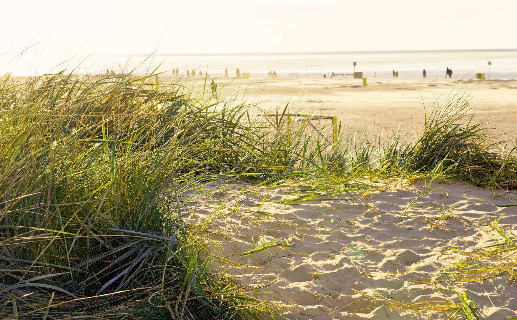 Strand am Hotel Regina Maris Norden Norddeich